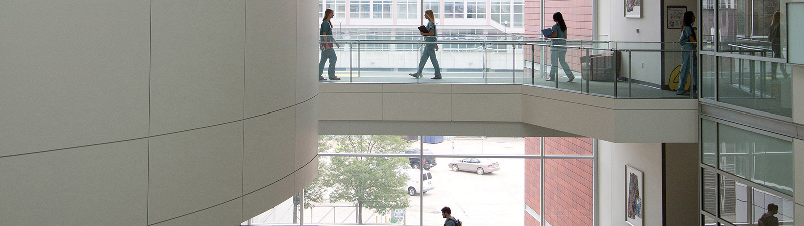 People walk across the Biomedical Sciences Research Building pathways