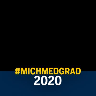 Facebook Frame MichMedGrad