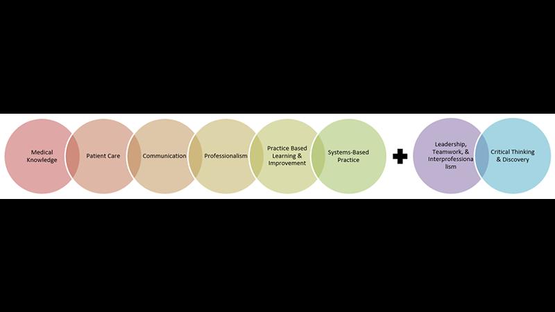 8 UMMS competencies