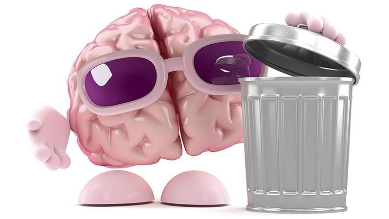 Brain Garbage