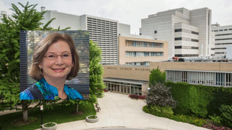 Sally Camper Distinguished University Professor lecture