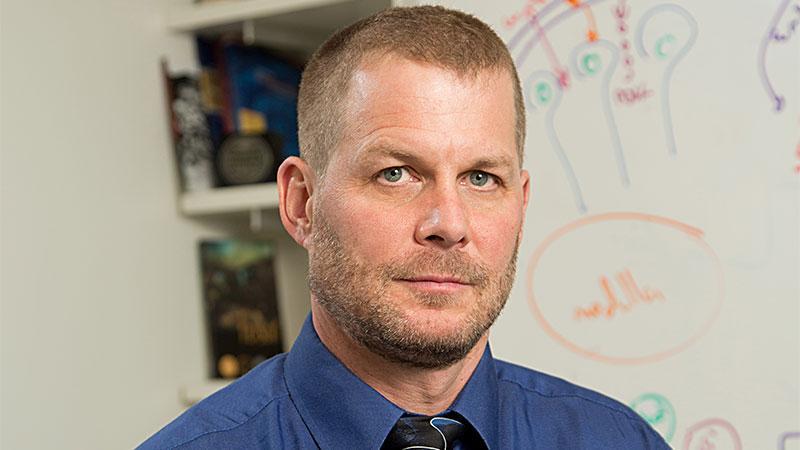 Gary D. Hammer, MD, PhD
