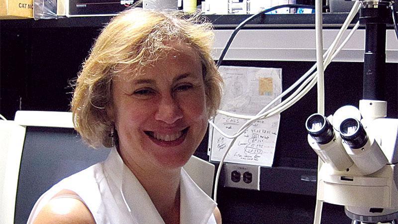 Michele Swanson, PhD