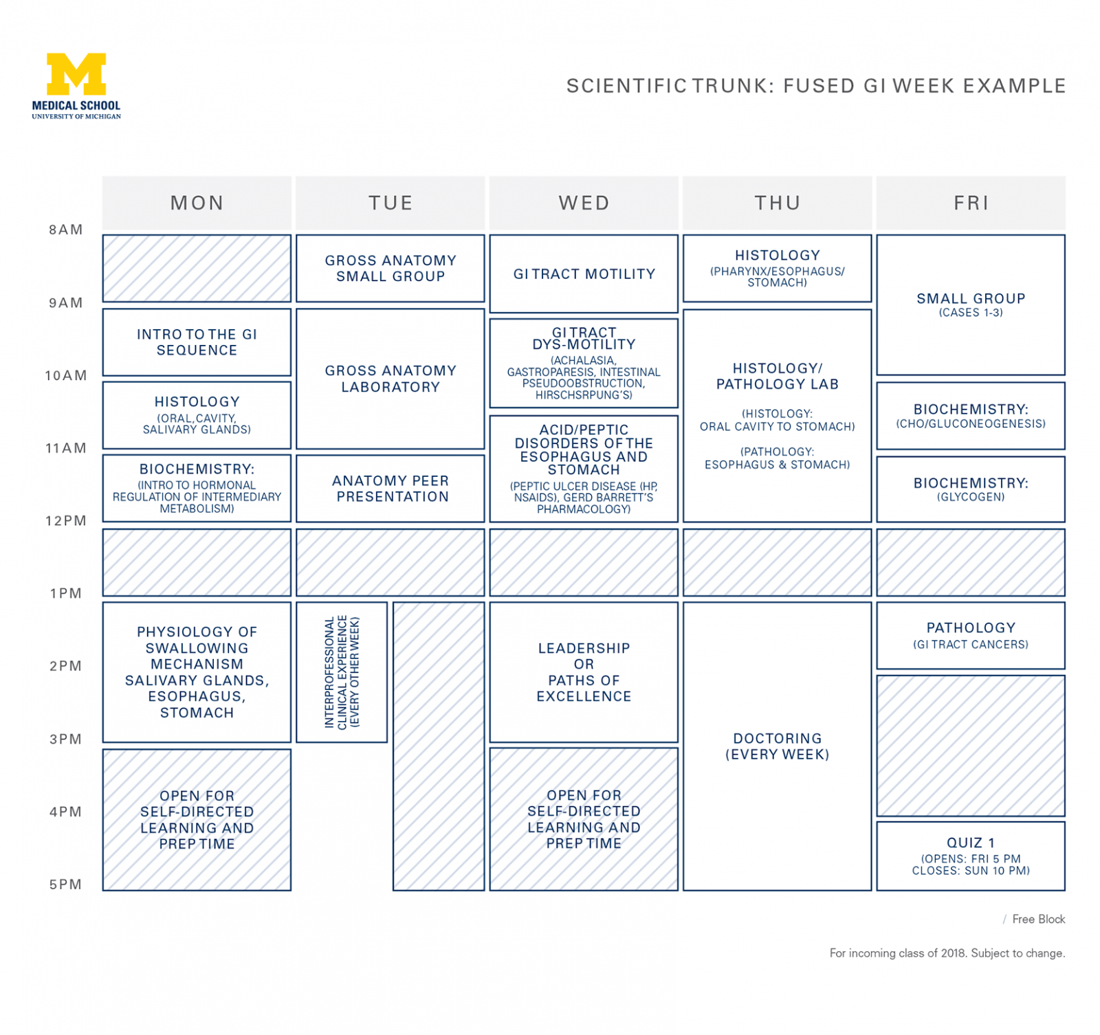 Year 1 university of michigan medical school please note these diagrams are provided for reference only curriculum details are subject to change updated april 2018 spiritdancerdesigns Image collections
