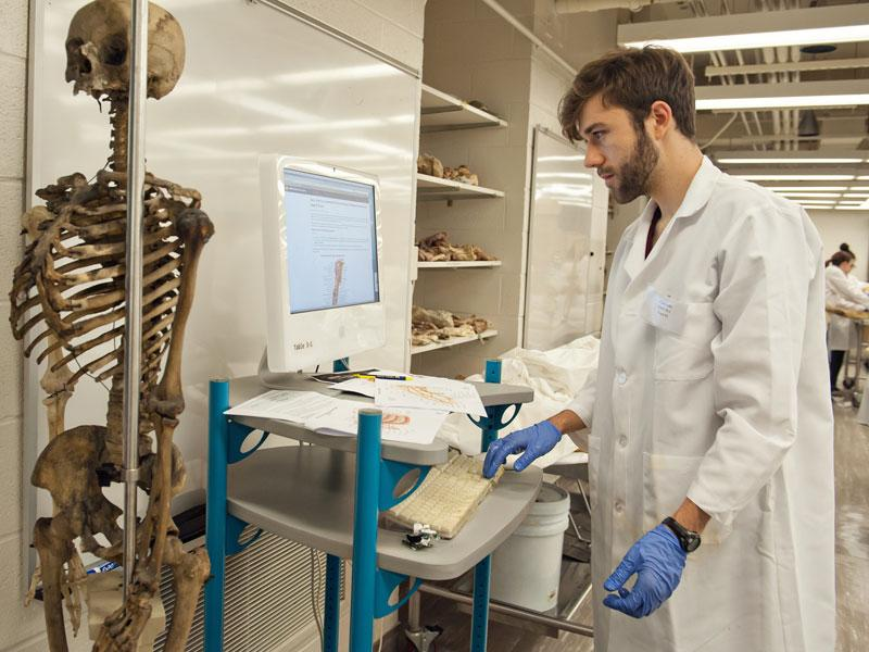 Medical student in anatomy lab with skeleton