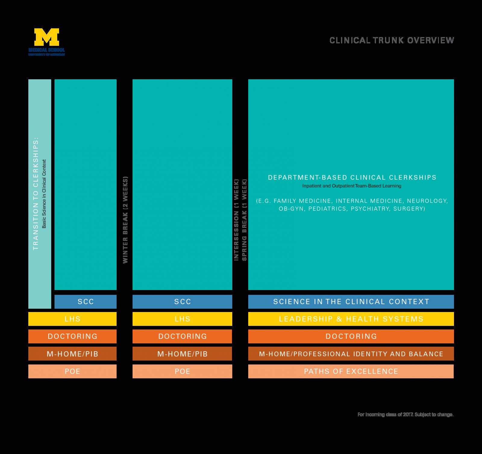 M.D. clinical trunk curricular diagram