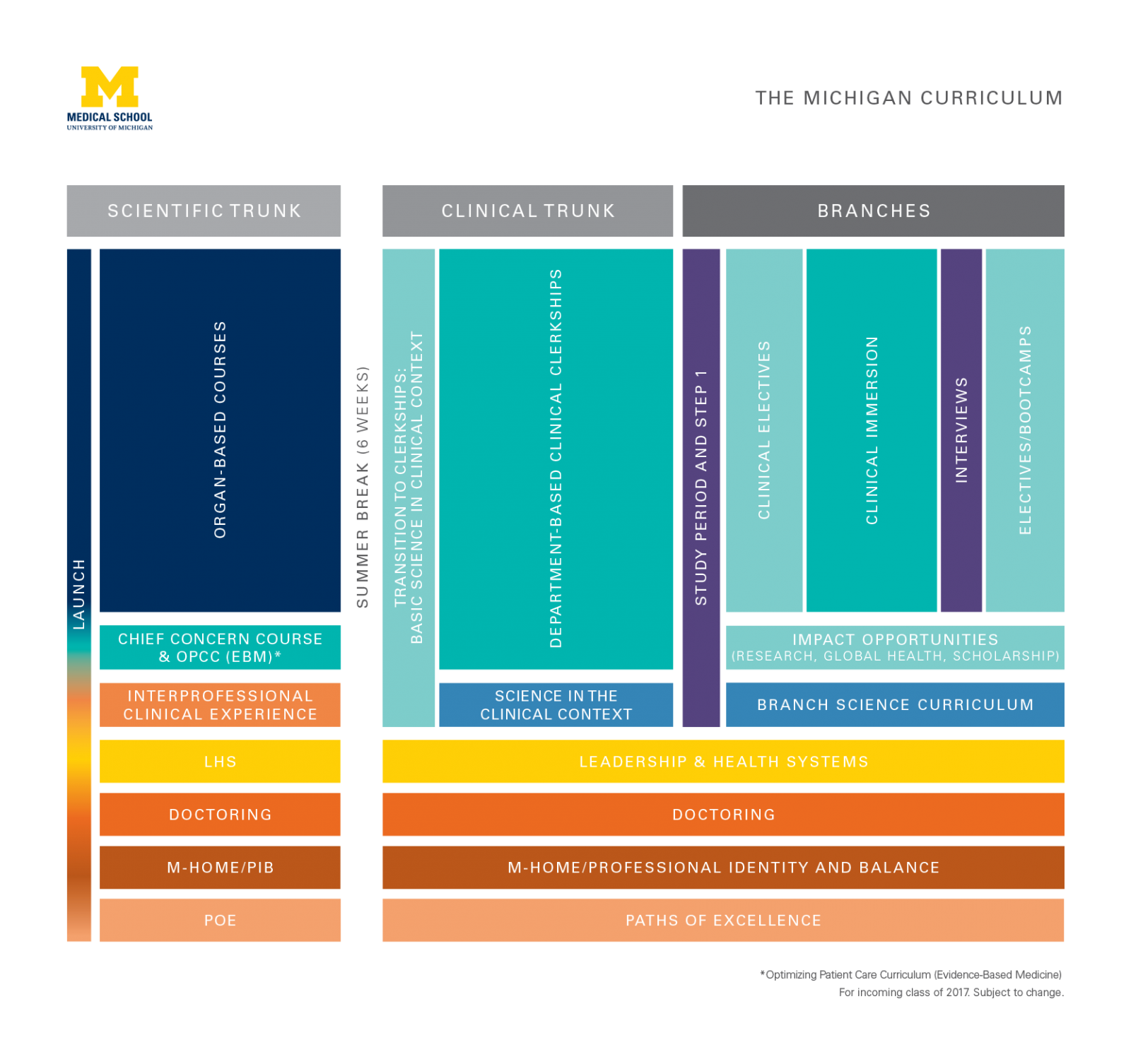 Overview graphic of medical school curriculum