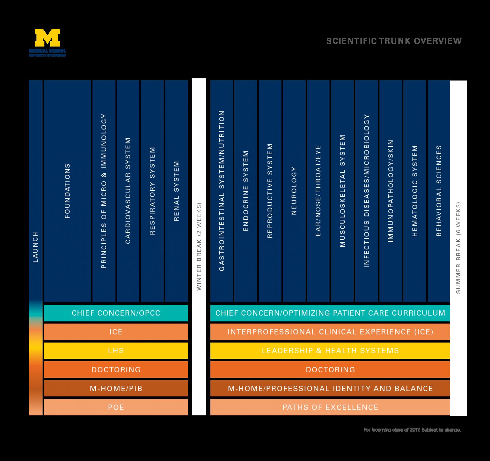 M.D. curriculum scientific trunk overview infographic