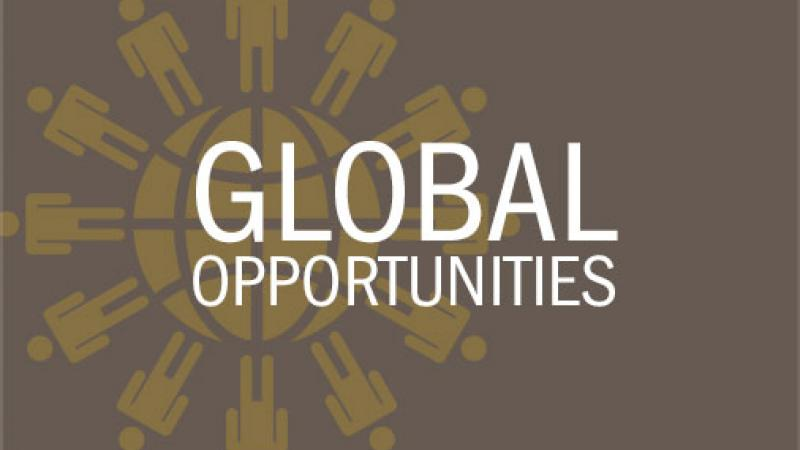 Global Opportunities link