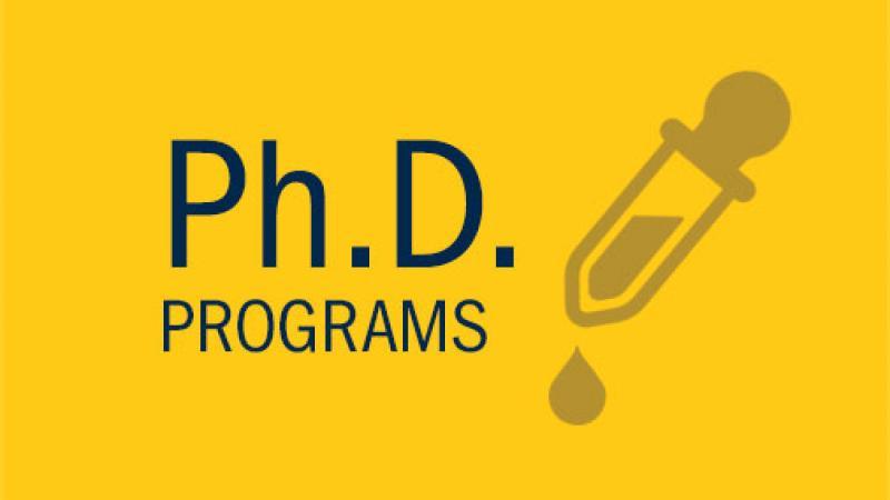 PhD Programs link