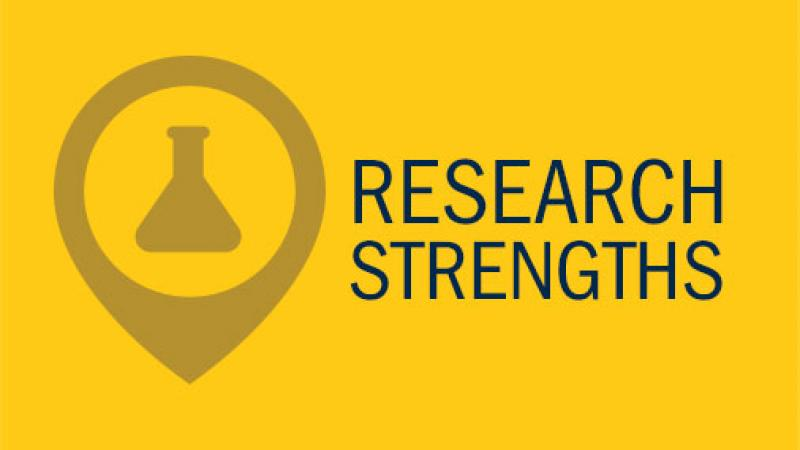 Research Strengths link