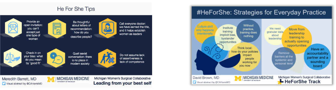 HeForShe Visual Abstracts