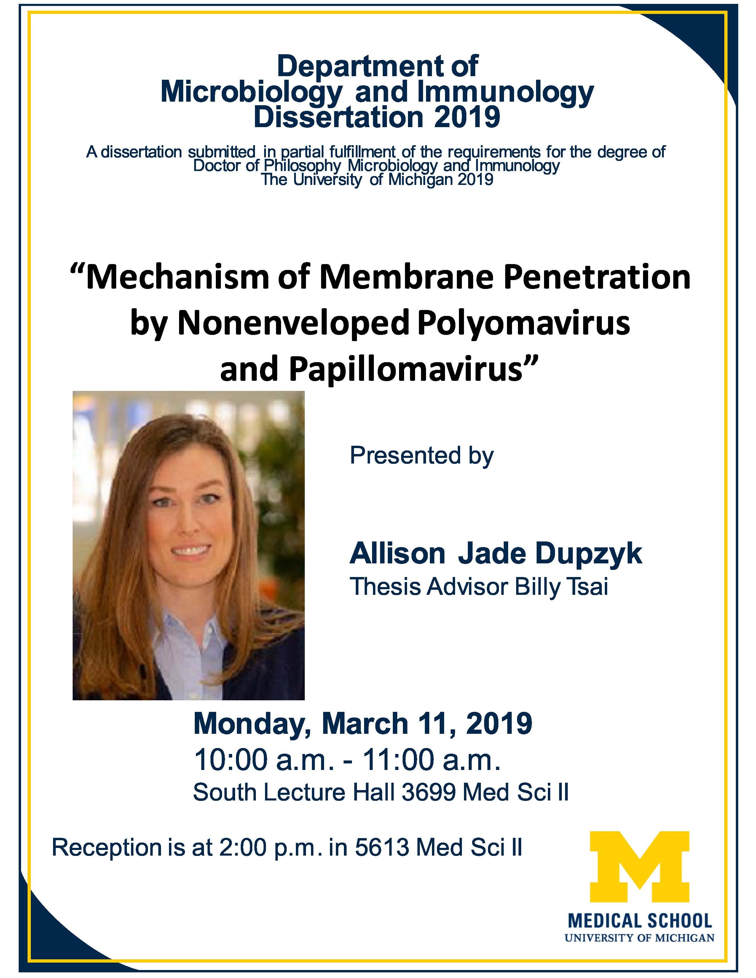 Allison Dupzyk Dissertation
