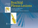 Brachial Plexus Lesions: Drawings of Explorations and Reconstructions