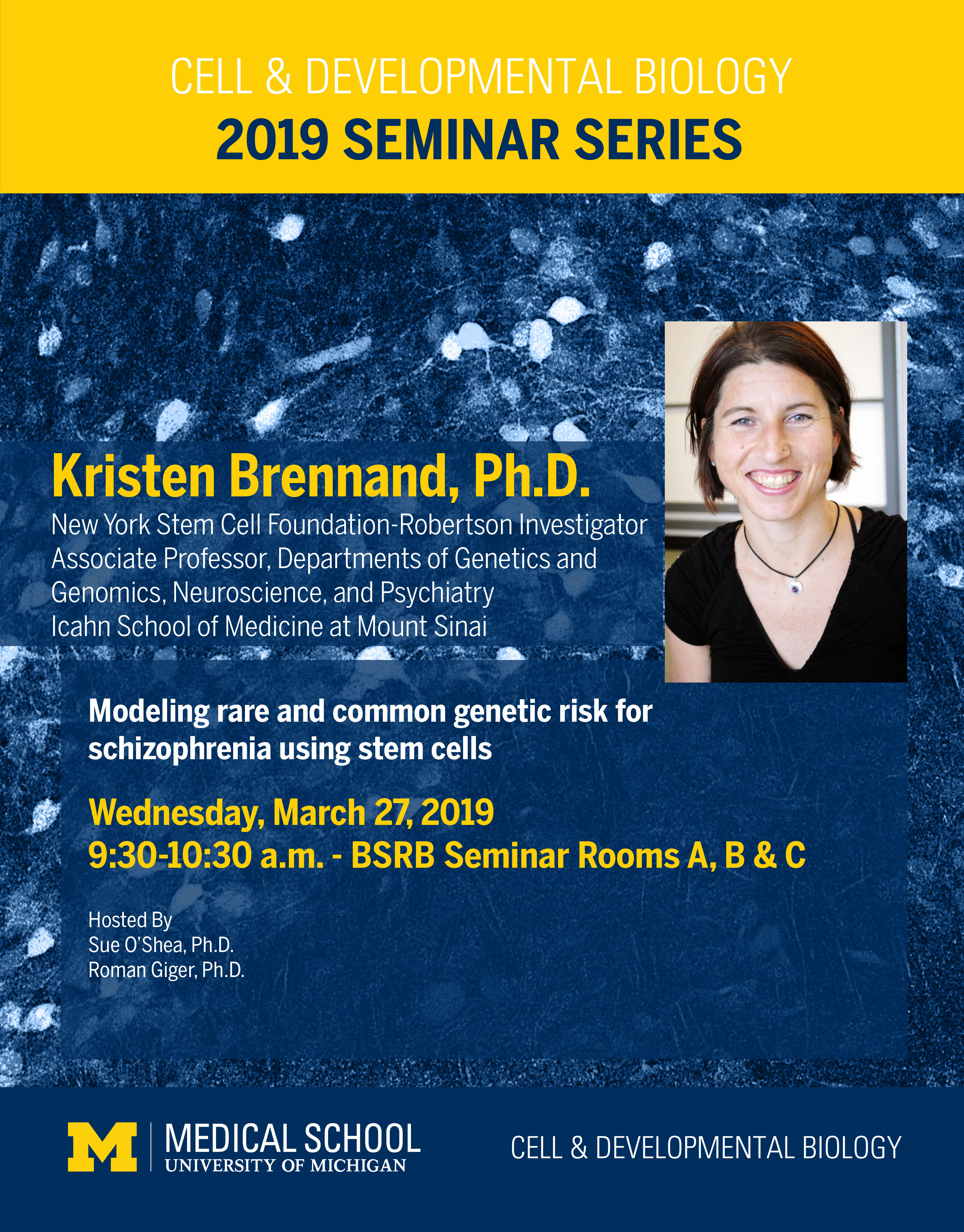 Brennand Seminar 2019