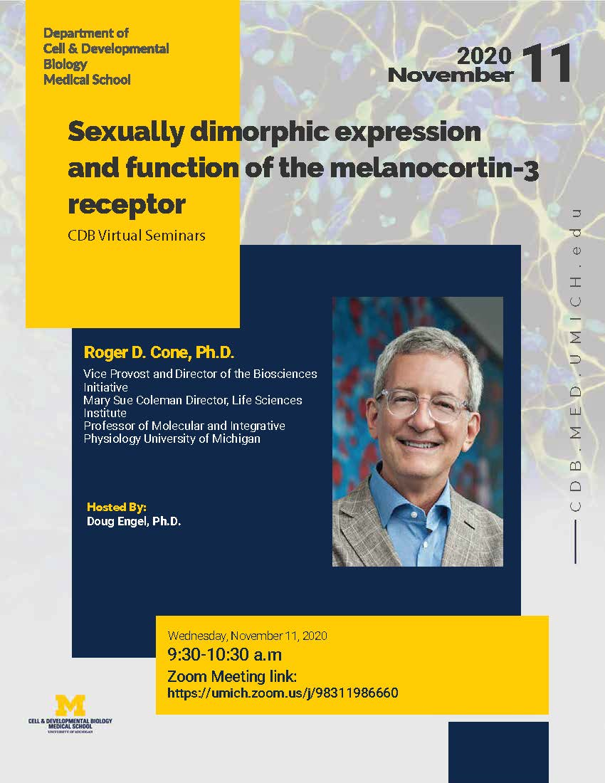 CDB virtual seminar - Roger D. Cone, Ph.D.