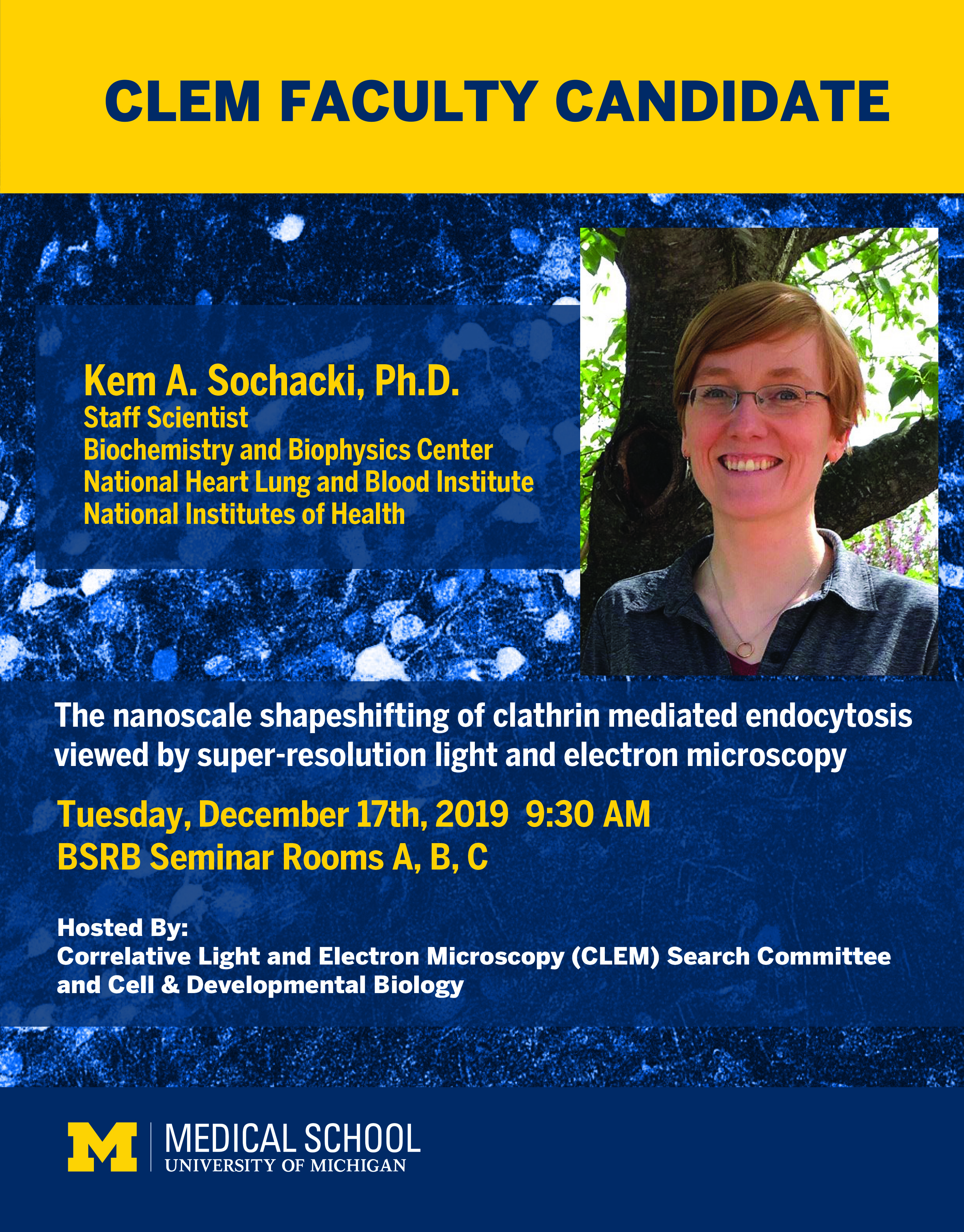 CLEM Faculty Candidate - Sochacki