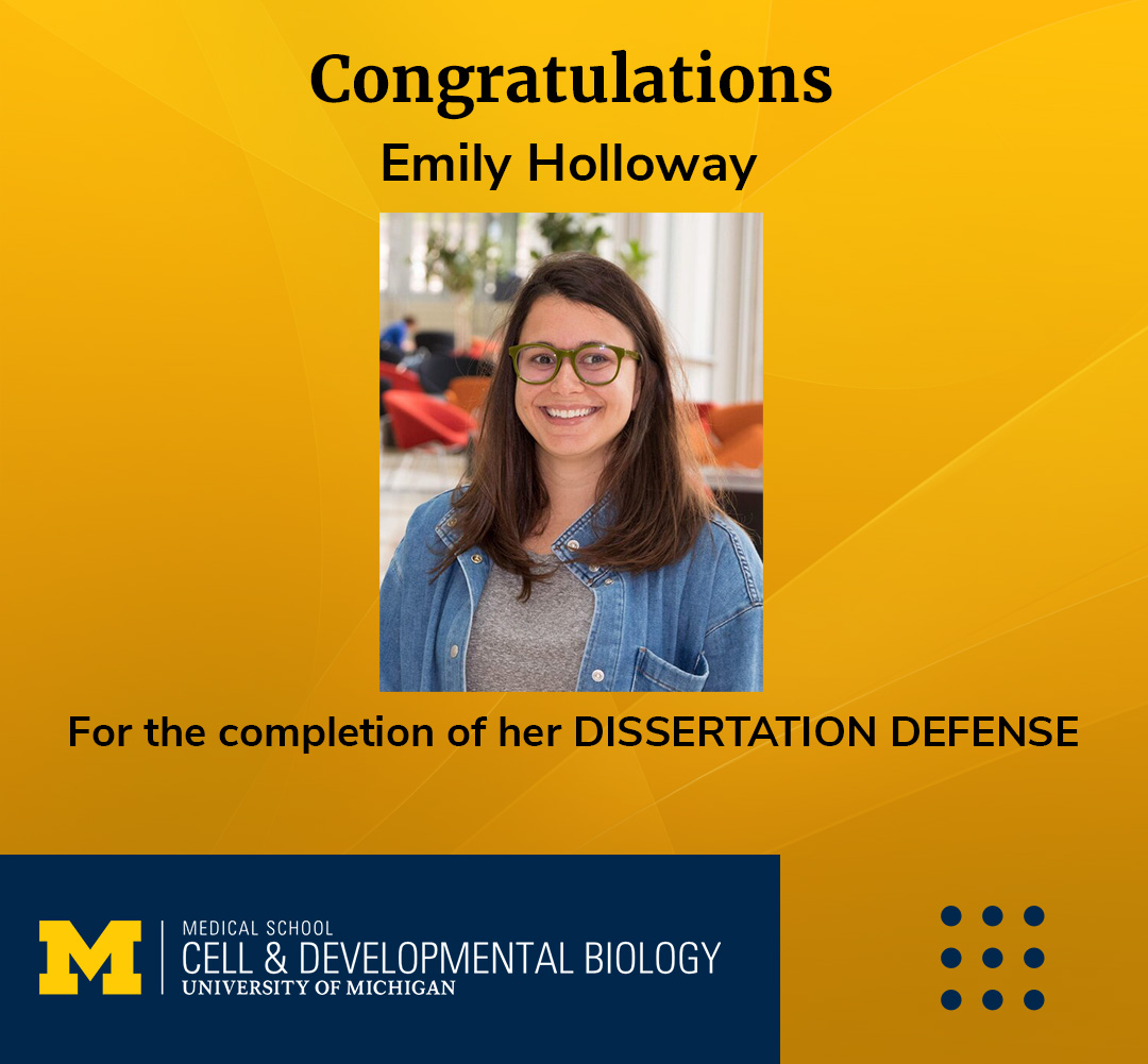 Emily Holloway CDB