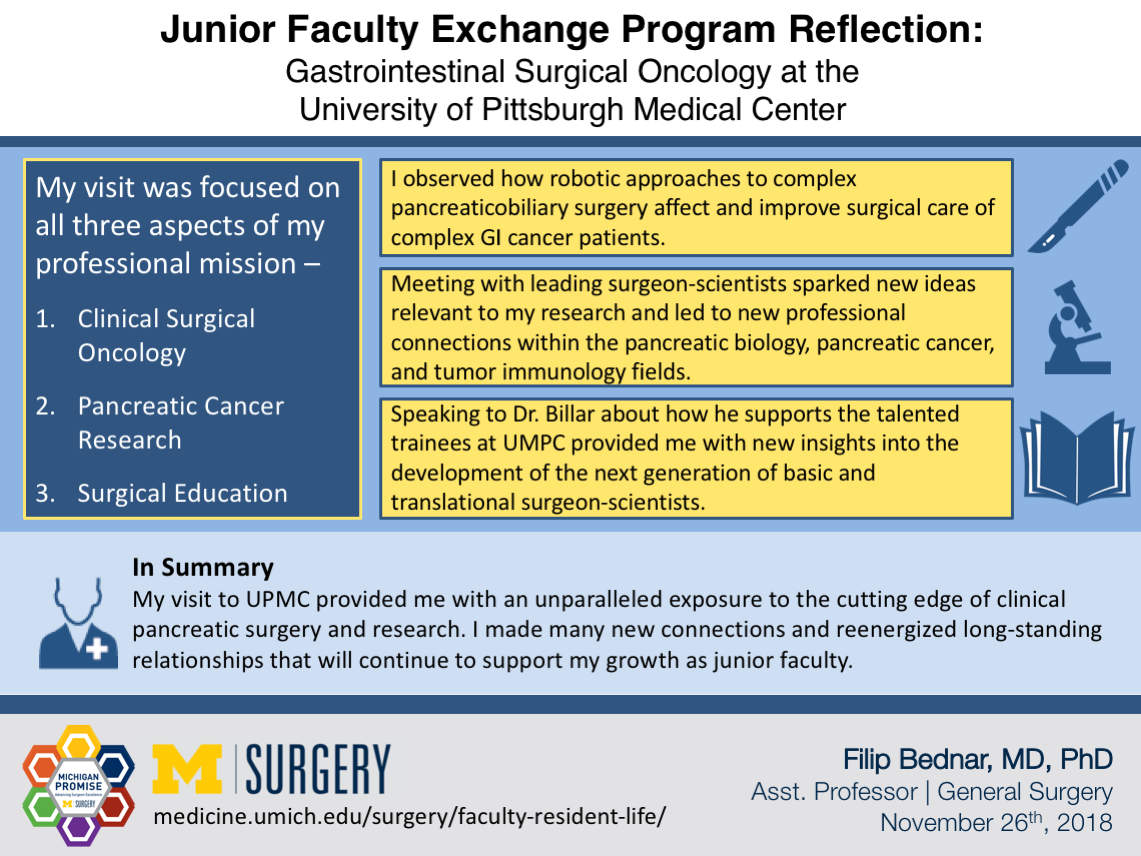Visual Abstract for Junior Faculty Exchange Program Reflection by Dr. Bednar