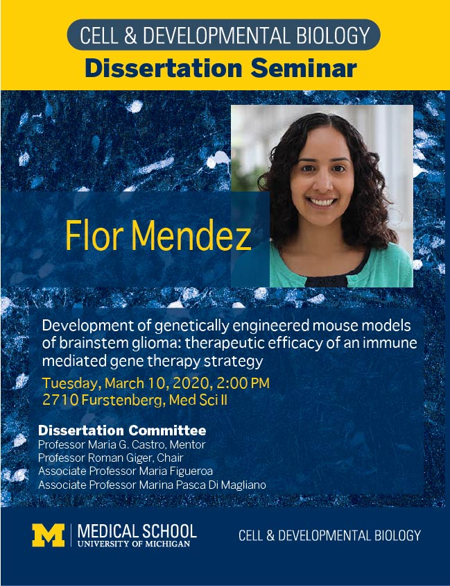 Flor Mendez Dissertation