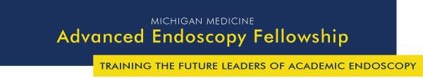 Advanced Endoscopy Fellowship - Training the future leaders of academic endoscopy