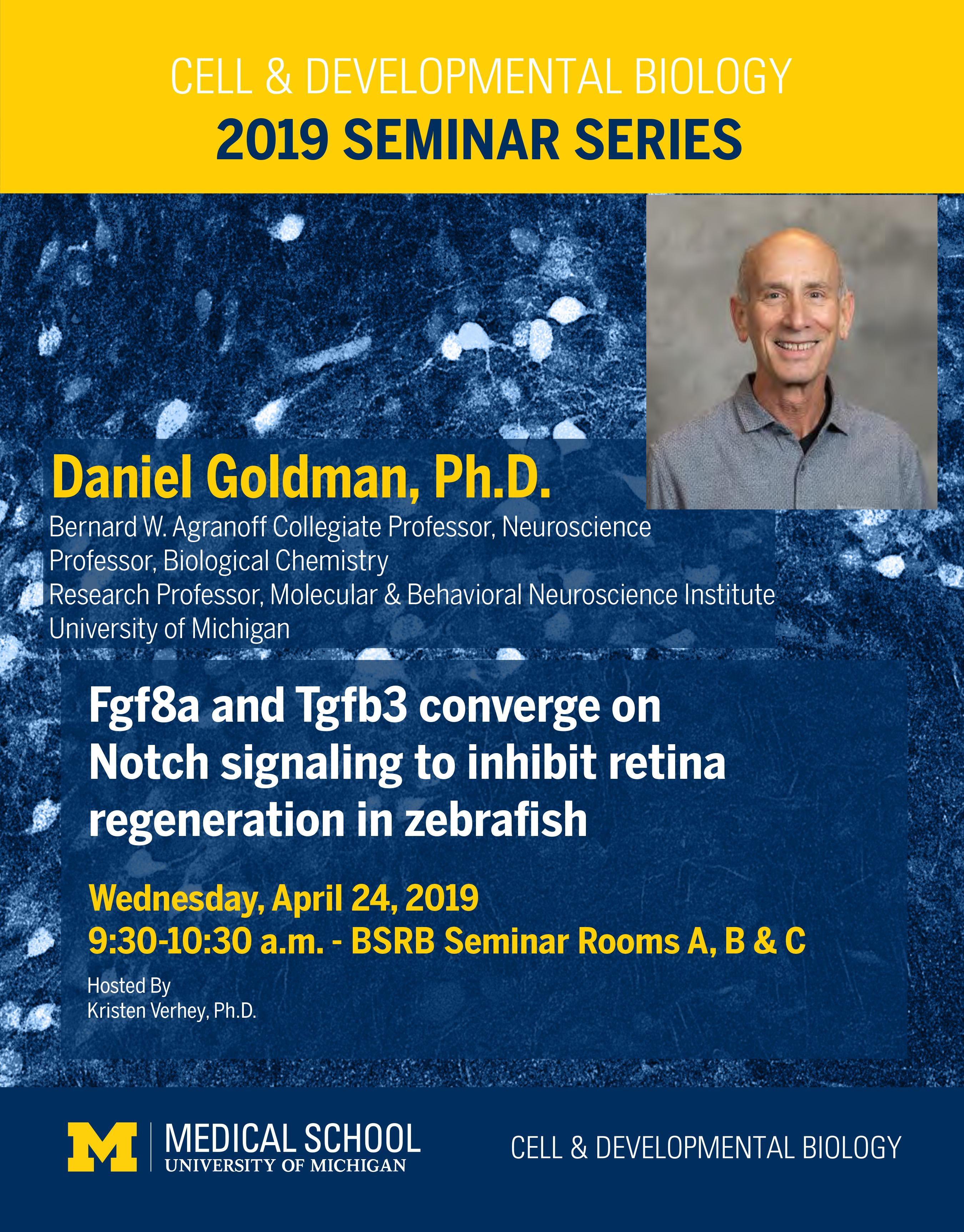 Goldman 2019 Seminar