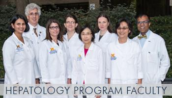 U-M Hepatology Program Faculty