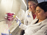 U-M Hematology & Oncology Division Research