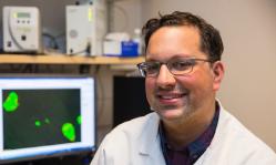 University of Michigan Scott Soleimanpour diabetes research