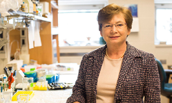U-M Genetic Medicine Division, Sally Camper, PhD