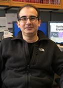 U-M Rheumatology Division, Amr H. Sawalha, MD