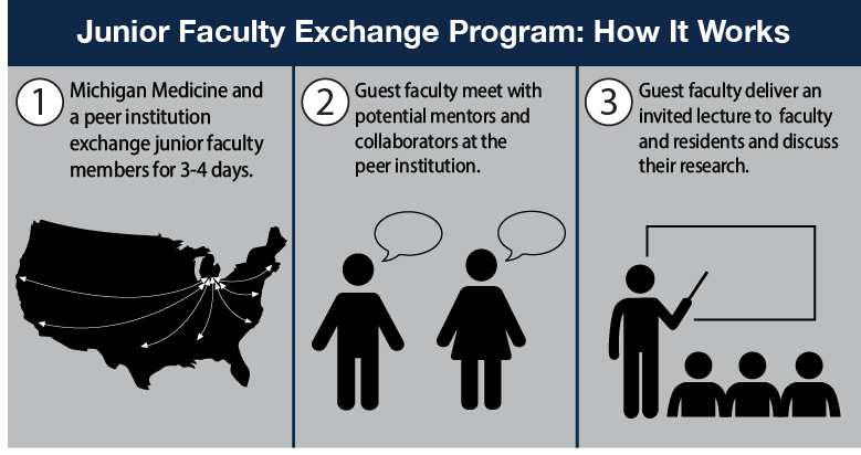The Junior Faculty Exchange Program: How It Works