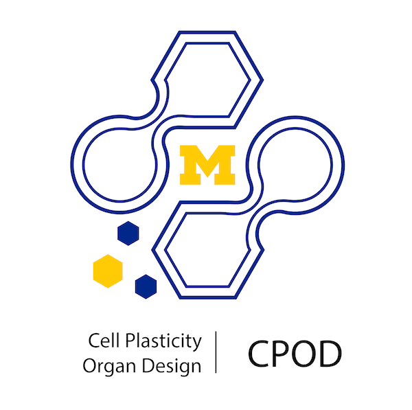 Logo CPOD