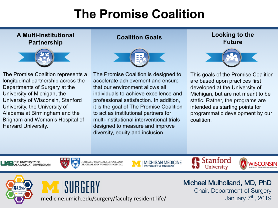 The Promise Coalition by Dr. Mulholland Visual Abstract