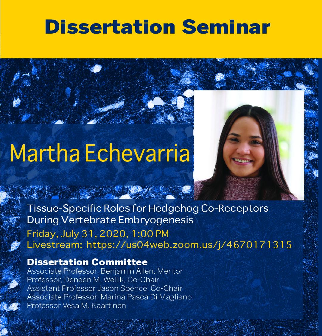 Martha Echevarria