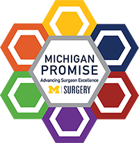 Michigan Promise logo