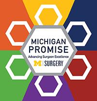 Michigan Promise logo