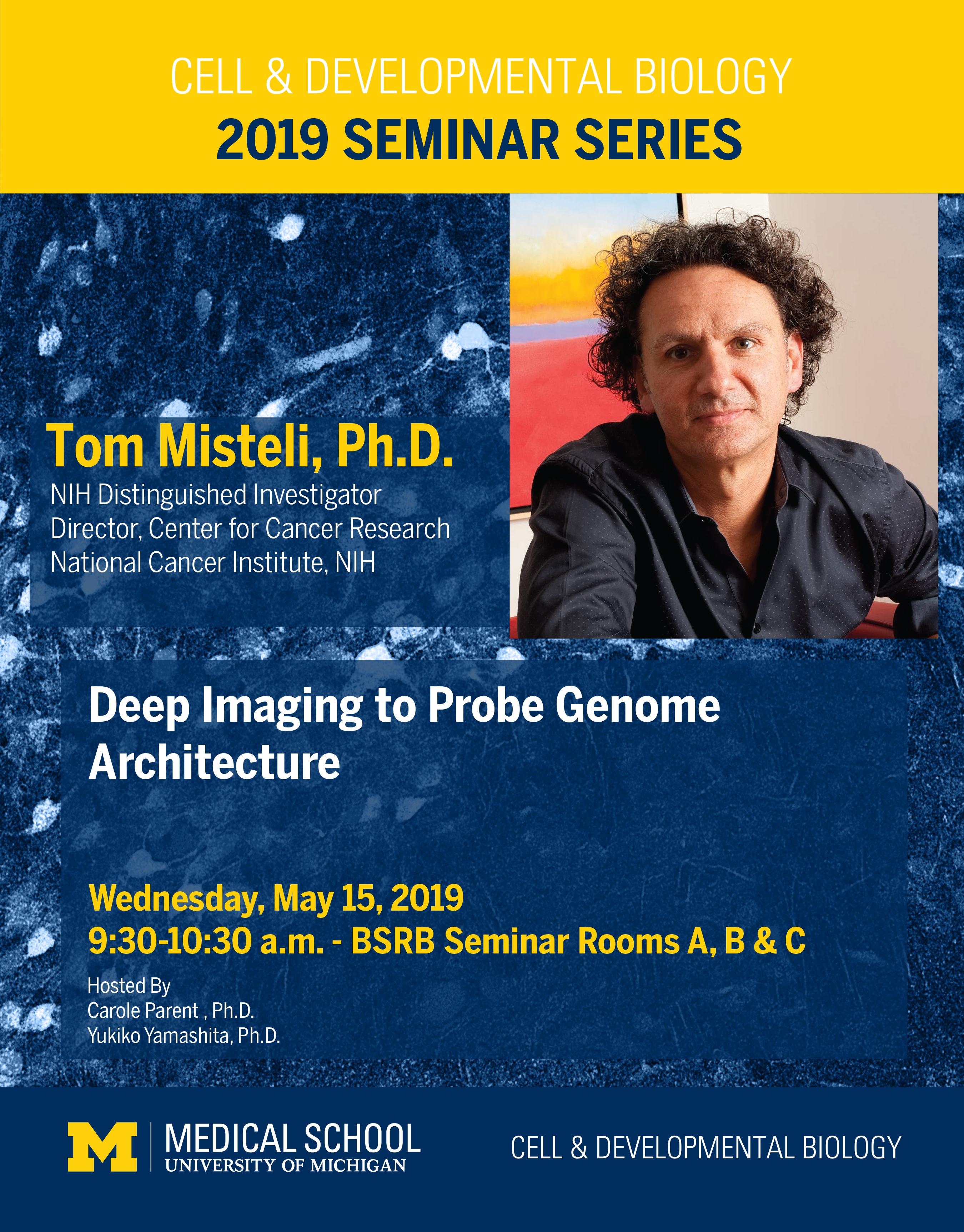 Misteli 2019 Seminar
