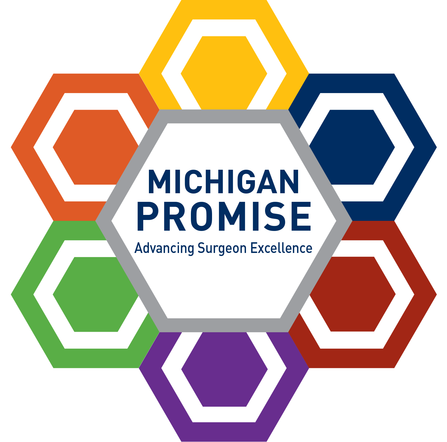 Michigan Promise: Advancing Surgeon Excellence