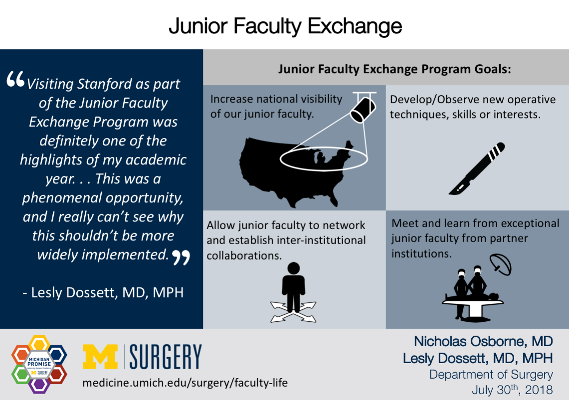 Visual Abstract for Junior Faculty Exchange Program Michigan Promise blog post