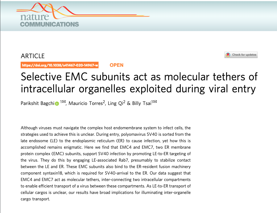 ARTICLESelective EMC subunits act as molecular tethers ofintracellular organelles exploited during viral entry