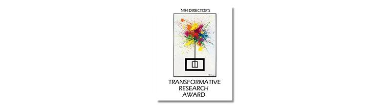 NIH Director's Transformative Research Awawrd