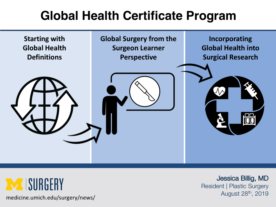 Global Health Certificate Program Visual Abstract