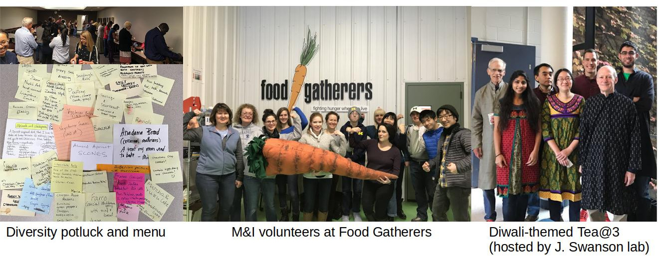Diversity Potluck and Menu, M&I volunteers at Food Gatherers, Diwali-themed Tea @ 3 (hosted by J. Swanson lab)