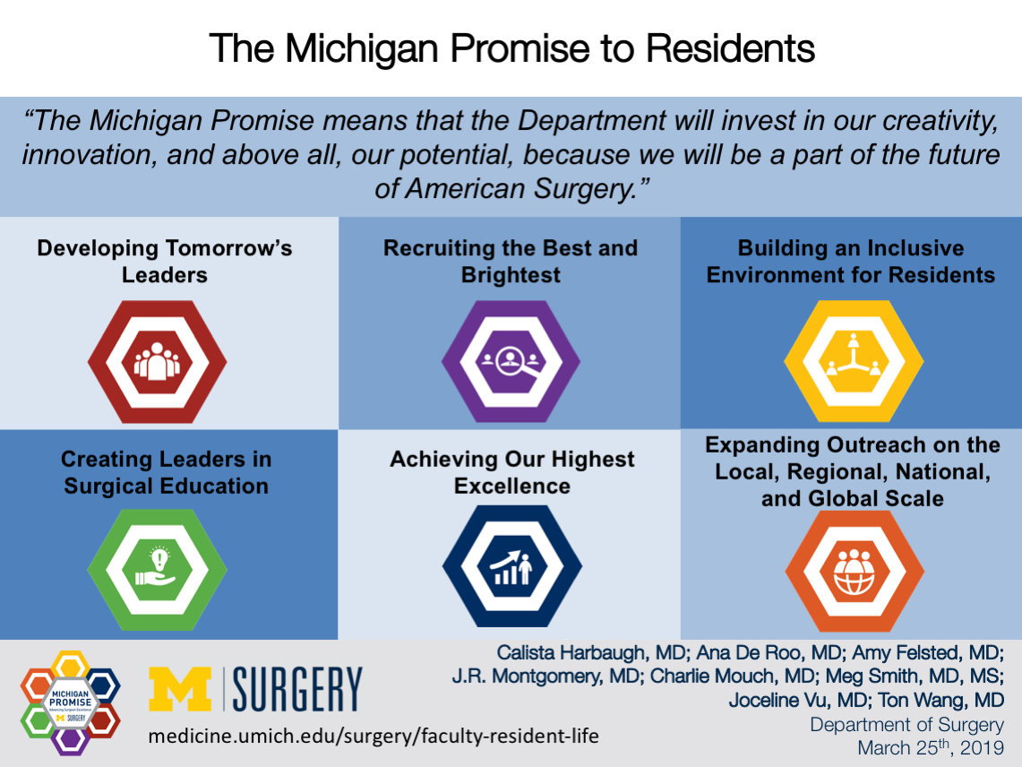 Visual Abstract for Michigan Promise to Residents