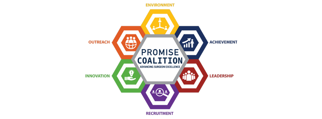 Promise Coalition Graphic