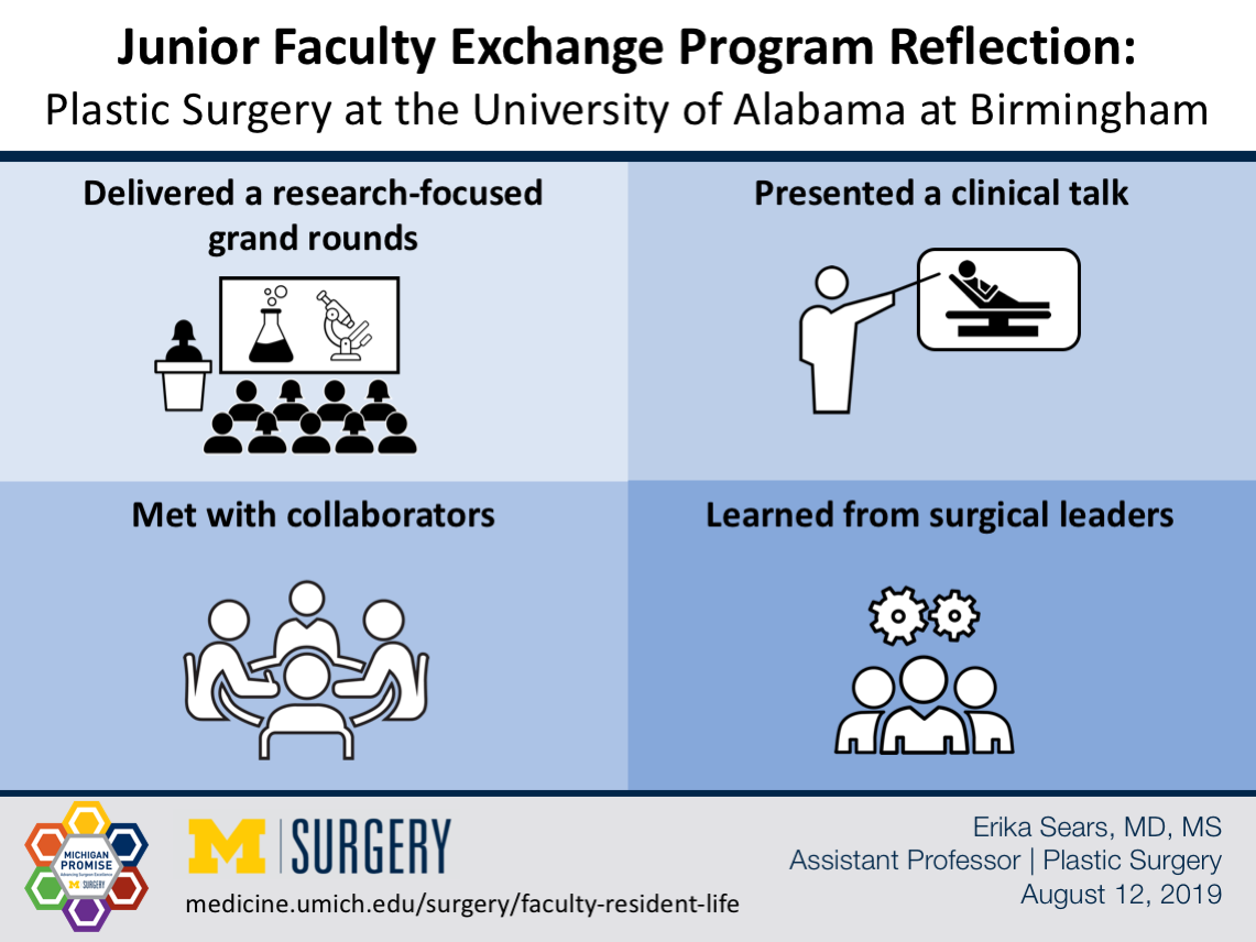 Visual Abstract for Junior Faculty Exchange Program Reflection by Dr. Sears
