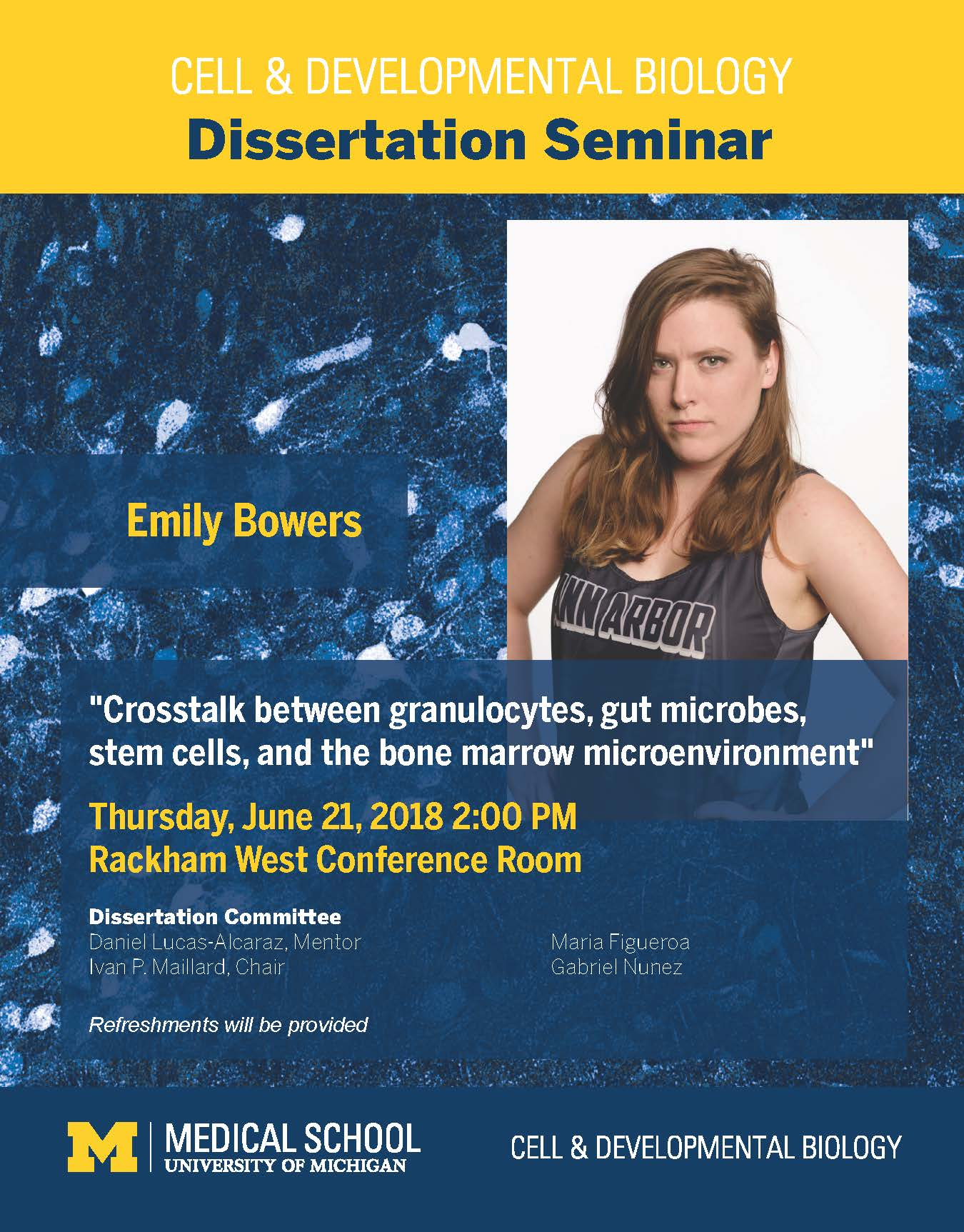 Emily Bowers Dissertation