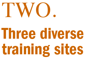 Three diverse training sites