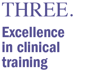 Excellence in clinical training